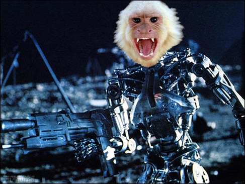 Robot-monkey-terminators