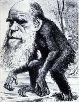 Darwin_monkey_cartoon